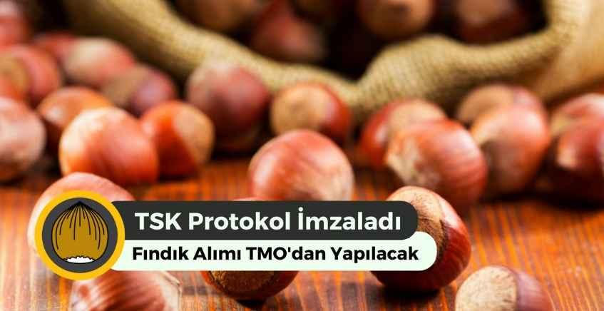 TSK 388 Ton Fındık Alımı Yapacak! Fındık Fiyatları Ne Kadar Olacak?